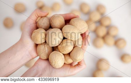 A Lot Of Whole Walnuts In Womens Hands On A White Background Close-up. Healthy, Organic Food With A