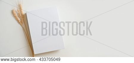 Blank White Book Cover With Dry Grass And An Empty Space On A White Background