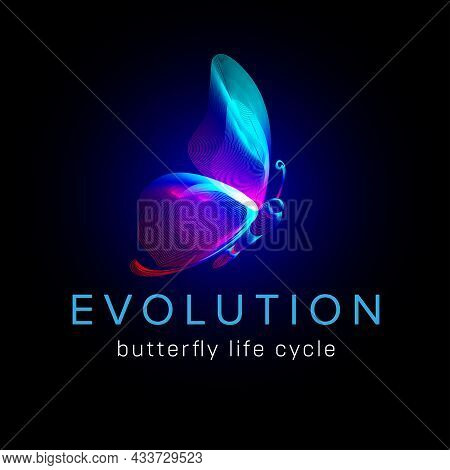 Evolution Butterfly Life Cycle. Flying Moth Neon Silhouette In 3d Line Art Style. Vector Illustratio