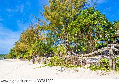 Tropical Paradise Island Koh Phayam Aow Yai Beach Landscape Thailand.