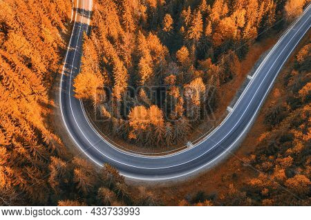 Aerial View Of Road In Beautiful Forest At Sunset In Autumn. Top View From Drone Of Asphalt Road In
