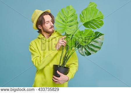 A young man in a trendy bright sweatshirt and hat gently holding a potted palm tree in his hands. Studio portrait in a blue background. Plants. Careful attitude to nature.