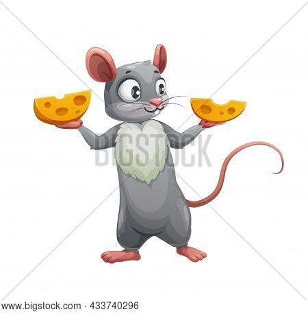 Cartoon Mouse And Two Halves Of Cheese. Vector Cute Rat Or Mouse, Hungry Rodent Animal Character Hol