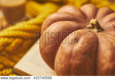 Round Ripe Pumpkin, Open Book And Warm Knitted Sweater. Autumn Composition. The Concept Of Thanksgiv