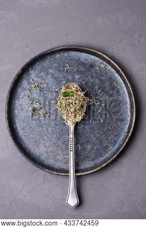Flax And Lucerne Sprouts In Spoon On Gray Background, Germinated Microgreens, Healthy Nutrition Conc