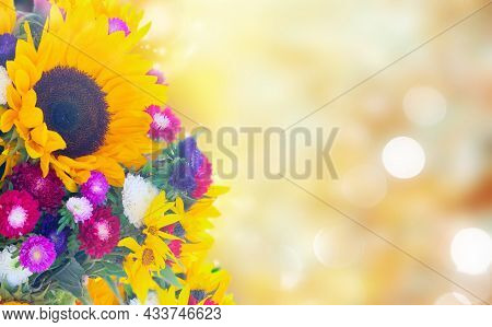 Sunflowers And Aster Fresh Flowers Border On Defocused Fall Background With Sun Beams