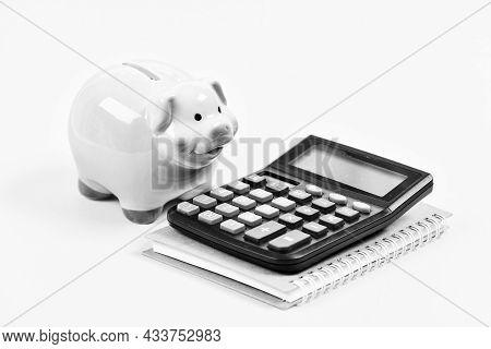 Courses Financial Literacy. Piggy Bank Money Savings. Credit Union Concept. Financial Help Services.
