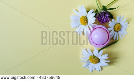 Wild Flowers Of Chamomile And Clover And A Bottle Of Balm On A Colored Background. Flowers And Cosme