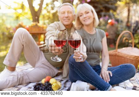 Cheers. Senior Spouses Clinking Glasses With Red Wine, Having Picnic And Sitting On Blanket In Garde