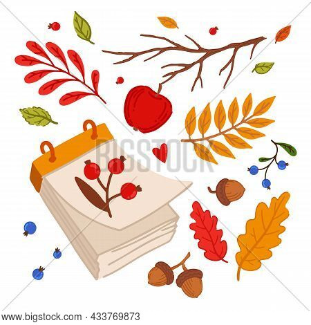 Cozy Autumn Elements. Loose-leaf Calendar. Forest Elements