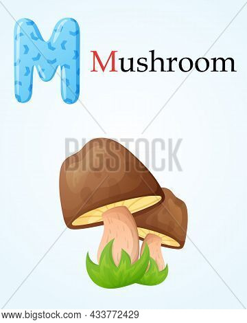 Kids Banner With English Alphabet Letter M And Isolated Cartoon Image Of Forest Porcini Mushroom In