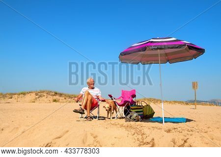 Senior man resting with old dog at the summer beach