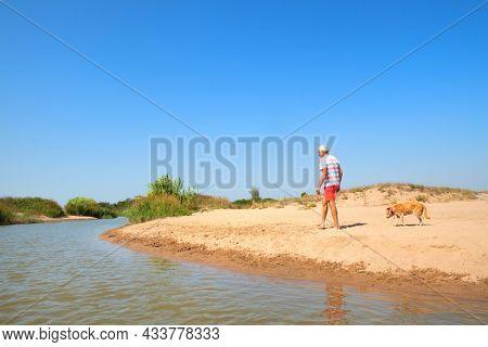 Senior man walking with old dog at the summer beach