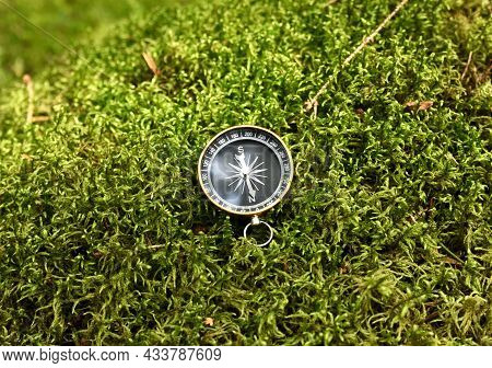Compass On Moss In Forest. Tourist Compass For Orientation On The Terrain. Magnetic Declination Alcu