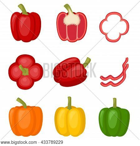 Sweet Red, Yellow, Orange Peppers, Bell Pepper. Slice Of Pepper, Cut Half Full Paprika, Vector Illus