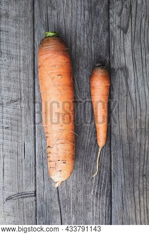 Two Carrots On Wooden Table, Big Vs Small, Self Esteem And Competition Concept
