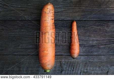 Big And Small Carrots As A Symbol Of Rivalry And Male Self-esteem Idea