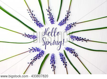 Hello Spring Postcard Layout. Flat Lay, Top View. Blue Hyacinths In Row Circle Shape. Greeting Card
