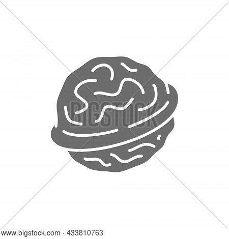 Walnut Grey Icon. Isolated On White Background