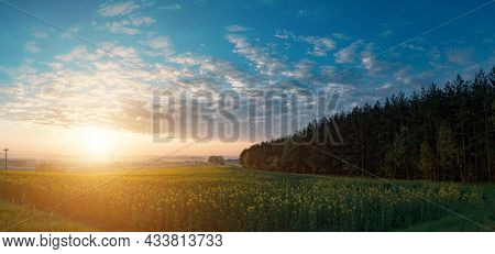 Panorama of the sunrise on the spring field