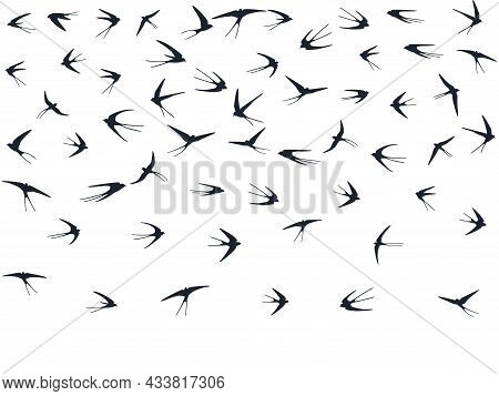 Flying Martlet Birds Silhouettes Vector Illustration. Nomadic Martlets Bevy Isolated On White.