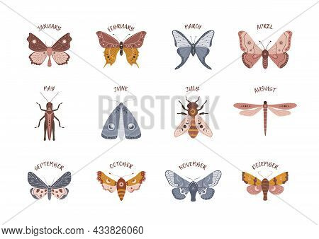 Insects In Boho Style With Months. Alchemy Esoteric Symbols. Celestial Elements For Childbirth, Birt