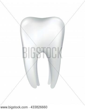 White Shining Human Tooth. Dental Medical Vector Icon. Stomatology Clinic Symbol. Teeth Protection,
