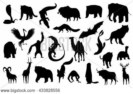Collection Of Cute Vector Animals. Hand Drawn Silhouette Animals Which Are Common In Asia. Icon Set