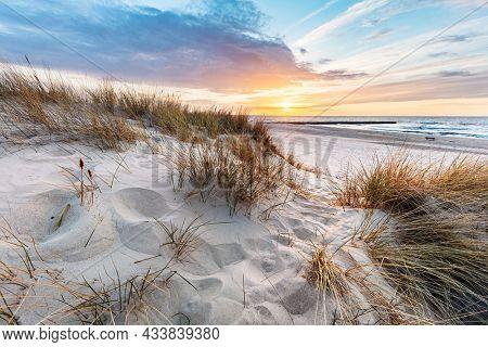 Beach grass on dune, Baltic sea at sunset. Calm landscape