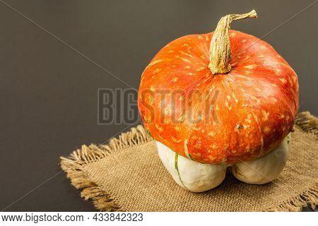 Ripe Decorative Pumpkin On Black Stone Background