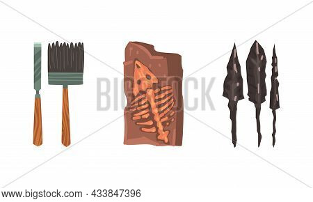 Archeology And Paleontology Ancient Artifacts With Bones And Arrows Vector Set