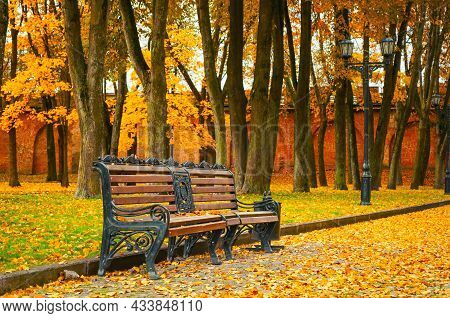 Autumn landscape, autumn in the city park. City park bench in the fall park, yellow fallen leaves on the road, autumn trees and golden autumn leaves, autumn park landscape