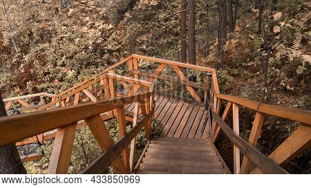 A Wooden Path In The Autumn Forest. A Wooden Bridge In The Forest. The Concept Of Urban Recreation.