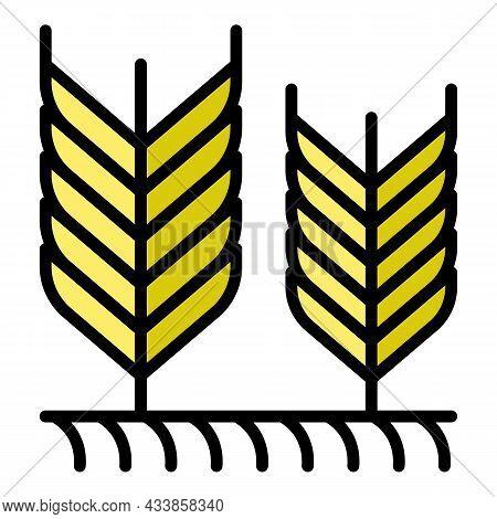 Farm Field Wheat Icon. Outline Farm Field Wheat Vector Icon Color Flat Isolated
