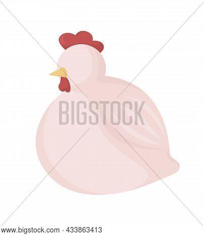 Chicken Semi Flat Color Vector Character. Sitting Cockerel. Farm Livestock. Full Realistic Animal On