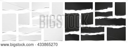 Ripped Paper Strips. Realistic Black And White Paper Scraps With Torn Edges. Sticky Notes, Shreds Of