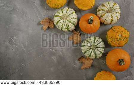 Thanksgiving Background Decoration Of Pumpkins On Wooden Background. View From Above.