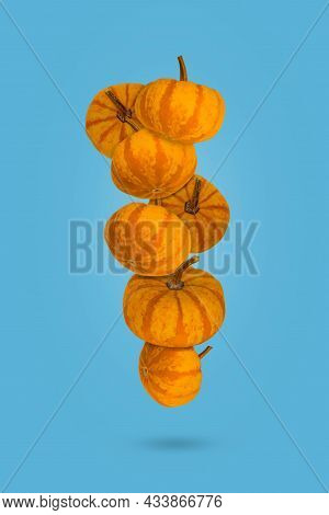 Autumn Pumpkins Floating In The Air In A Blue Background, Holiday Decoration. Halloween Or Thanksgiv