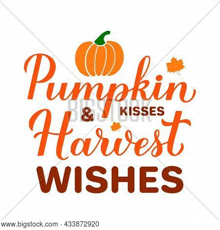 Pumpkin Kisses And Harvest Wishes. Funny Fall Quote Lettering. Vector Template For Typography Poster