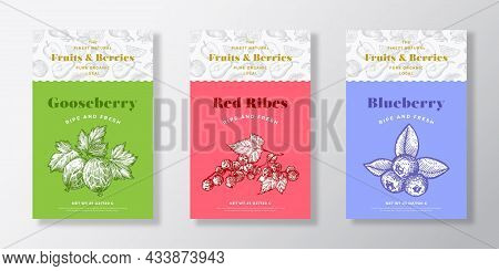 Fruits And Berries Pattern Label Templates Set. Vector Packaging Design Layout Collection. Modern Ty