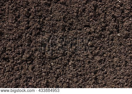 Black Earth Texture. Loose Ground Close-up. Plowed Soil