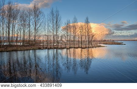 Spring Watercolor Picture Of The Lake Of The Solar Cloud And Numerous Birds Reflected In The Water I