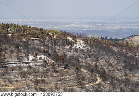 Agricultural Buildings Burnt In A Wildfire That Took Place In The Judea Mountains, Near Jerusalem, I