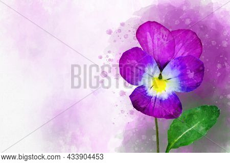 Close-up Of Purple Pansy Flower In Watercolor. Botanical Illustration For Greeting Card