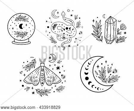 Celestial Logo Set. Floral Moon Circle Logo Moon Logo. Moon Phase, Floral Crystal, Serpent, Snake, M