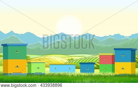 Apiary. Rural Farm Landscape With Bee Hive In A Summer Meadow. A Meadow On The Outskirts Of Agricult