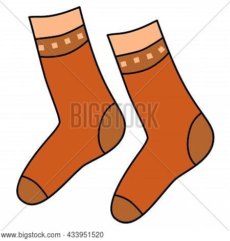 Vector Isolated Clothers Element Warm Pair Of Socks