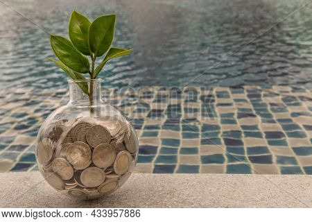 The Saplings That Grow On The Pile Of Coins In A Glass Bottle On Pool Background Symbol For Business