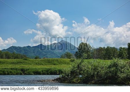 Fallen Trees Lie In The Riverbed. There Is A Lush Green Vegetation On The Shore. A Picturesque Mount