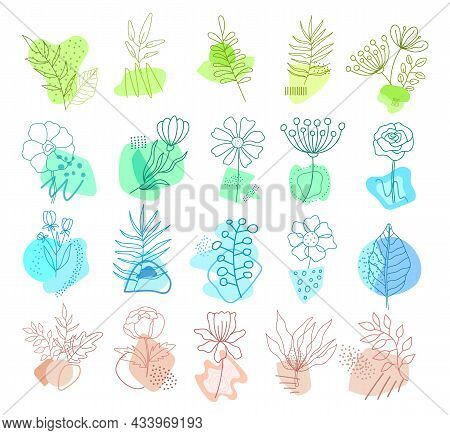 Beautiful Leaves And Flowers Set With Modern Geometric Shapes Isolated On White Background. Trendy F